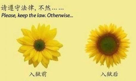 请遵守法律,不然...