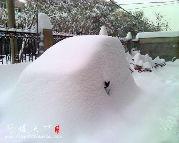 2009年大雪,出门一看什么都变了,什么都不认得了