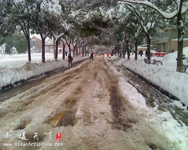 大雪过后的街道