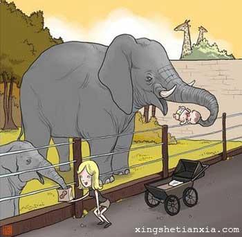 去动物的家长可要看好自己的孩子哦