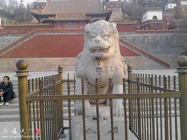 颐和园北宫门很奇特的狮子