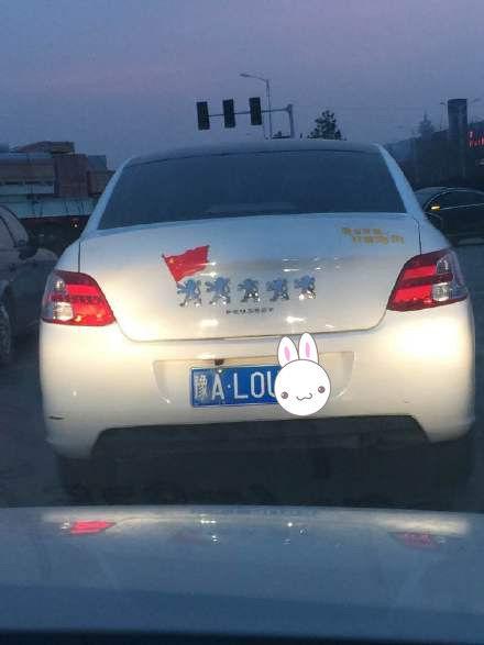 逗比的标致车主,小狮子排队